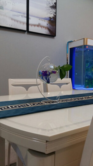 萌碎创意文艺装饰品摆件室内悬挂水培植物花瓶摆件透明玻璃现代简约办公室桌面艺术品鱼缸瓶 中冬瓜配月牙铁架+彩石随机水草 晒单图