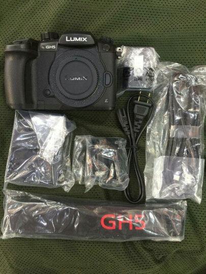 松下(Panasonic)DC-GH5GK 微型单电数码相机/照像机 4K视频 搭配奥林巴斯12 F2.0 晒单图