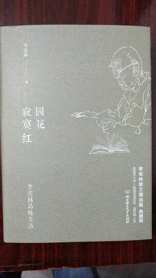 林徽因文集:你是那人间四月天(套装共3册) 晒单图