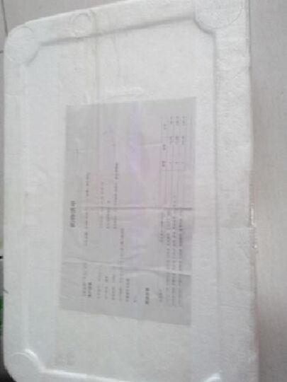 彼特博 酸奶猪 通脊肉丝 400g/袋 乳酸菌饲养 免切洗 晒单图