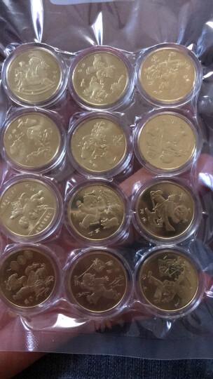 楚天藏品 2003-2014年十二生肖纪念币 第一轮生肖币全套 第一套12生肖流通纪念币 2013年蛇年 晒单图