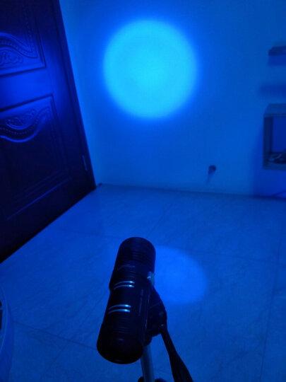 夜钓灯钓鱼灯紫光台钓超亮鱼灯大功率充电蓝光手电筒强光240W夜光 大支架套餐(基础套餐+大支架) 晒单图