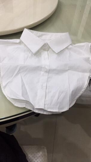 简单浪漫 秋冬季 假领子 女款质 绣花装饰衬衫 白色毛衣领 花苞立领白 晒单图