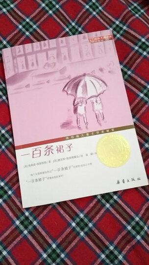 国际大奖小说 升级版——一百条裙子 晒单图