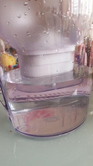 碧然德(BRITA)过滤净水器 家用滤水壶 净水壶 金典星光系列 Marella xl 3.5L(银色) 晒单图