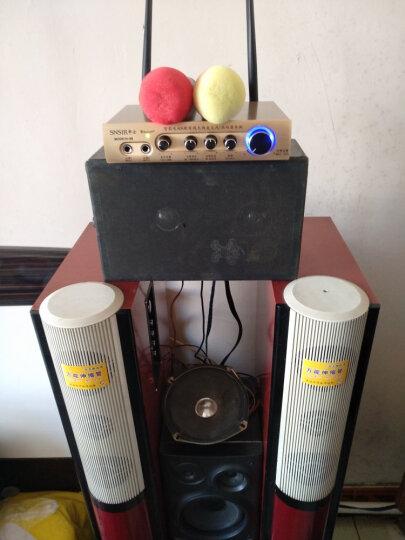 申士(SNSIR) T系无线话筒U段麦克风一拖二 专业KTV功放音响家庭影院家庭K歌专用 T-3单手持式 晒单图