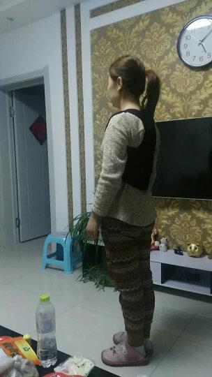 俞兆林(YUZHAOLIN) 背立挺驼背娇姿带成人学生儿童男士女士版驼背坐姿矫正护腰带驼揹背佳 XL码(高165-185cm重88KG以内) 晒单图