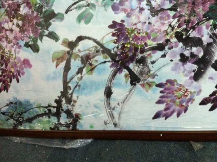 室全室美现代装饰画客厅卧室餐厅大幅复古田园风格中式中国壁画实木有框画古代名人名画花卉百花红 田雨霖 紫气东来 60cm*160cm/幅 晒单图