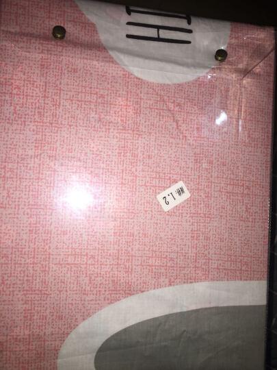 卡培拉 全棉床单床笠款四件套纯棉单双人加大床罩床套式4套件 小可爱 2.0m床单四件套(被套220x240cm) 晒单图