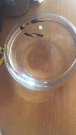 透明圆形金鱼缸 生态创意圆缸玻璃鱼缸大号乌龟缸 20CM圆盆(裸缸) 晒单图
