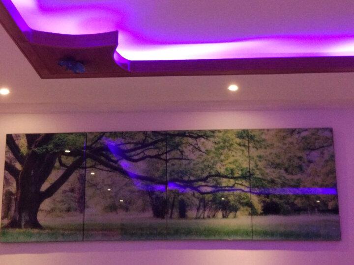 庭轩 常青树客厅装饰画酒店大堂风景绿树水晶无框画办公室墙画冰晶餐厅壁画长青树挂画沙发背景 三联B款 80cm*80cm/冰晶玻璃面/全套价格 晒单图