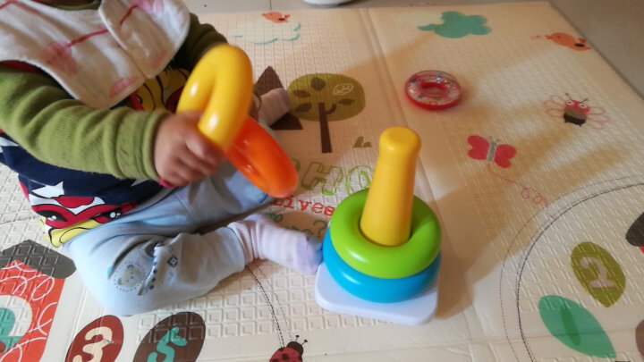 费雪(Fisher Price)益智玩具精细动作训练婴儿礼物 积木小斑马 CGN63 晒单图