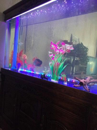水族箱鱼缸造景仿真水草生态装饰高仿真 小荷花紫 晒单图