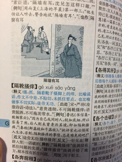 中华成语词典(最新修订版·单色本) 晒单图