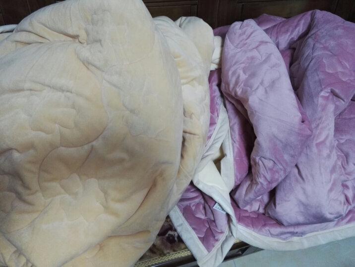 北极绒家纺 毛毯绒毯盖毯加厚珊瑚绒毯单人双人法兰绒午睡毯子冬季保暖床单 四叶草 法莱绒毛毯玫红 180*200cm 晒单图