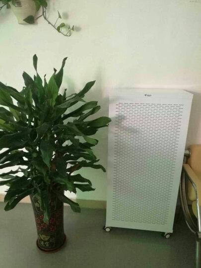 伊斐净宝 FFU空气净化器 家用除雾霾PM2.5办公新房装修除甲醛灰尘移动大型新风机 空气净化器 晒单图