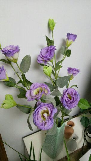 米子家居  居家装饰品仿真花假花干花绢花  辛蒂瑞拉桔梗花 5支浅紫色把束 晒单图
