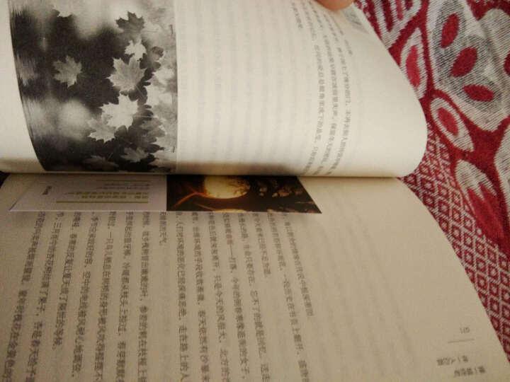 择一城终老,伴一人白首+倾一城烟花,伴一世清欢 青春 励志书籍心灵散文随笔文学 晒单图