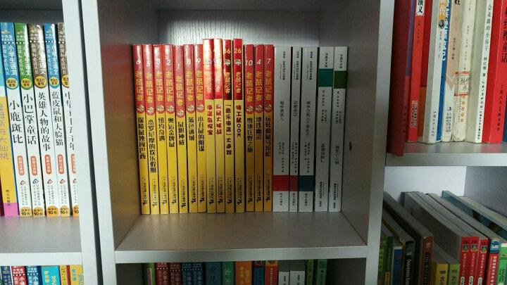 老鼠记者新译本·第8季(36-40 套装共5册) 晒单图
