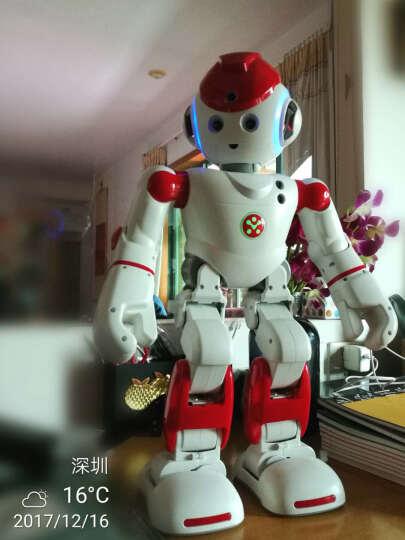 优必选(UBTECH) ubtech优必选人工智能机器人管家早教机阿尔法Alpha2语音对话家庭陪伴 平台级机器人Alpha Qrobot 晒单图