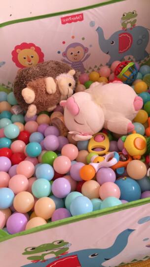 哆啦A梦 儿童海洋球池 体育投篮围栏球池 儿童健身玩具 配50个海洋球彩盒装 蓝色 晒单图