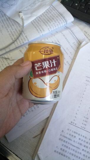 一枝笔 【莱阳馆】包邮芒果汁饮料 40%果肉果味饮品245ml*6罐组合 晒单图