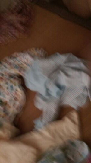 南极人(Nanjiren) 南极人儿童秋冬棉衣外套夹棉夹克宝宝外套婴儿加厚外出服 云朵小熊-卡其 80cm 晒单图