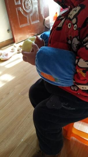 秋冬季婴儿童短款水果家园袖套宝宝可爱护袖小童女婴幼儿小孩套袖 苹果 4岁以下 晒单图