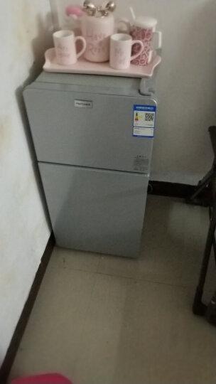 帕琪丝(PATCHES) 冰箱 小型 双门迷你小冰箱 家用冷藏冷冻小型电冰箱BCD-56 晒单图