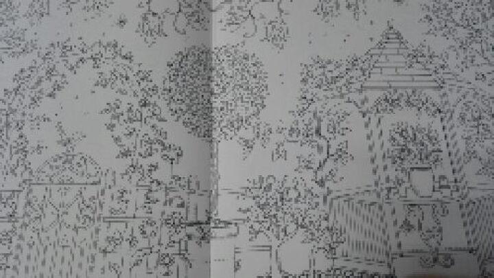 【中商原版】现货 台版 秘密花园 Secret Garden 原版 减压涂鸦手绘填色书绘本中文版 晒单图