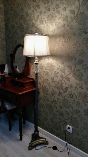 登对(DENGDUI)美式简约落地灯客厅书房立式阅读地灯创意欧式复古温馨暖光LED卧室落地台灯装饰 灰蓝色-杠杆开关 晒单图