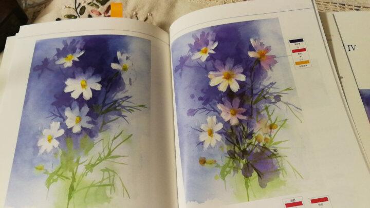 永山裕子的水彩课(套装共4册):1重新开始学水彩+2叠色渲染技法+3画出透明感+4从素描到水彩 后浪 晒单图