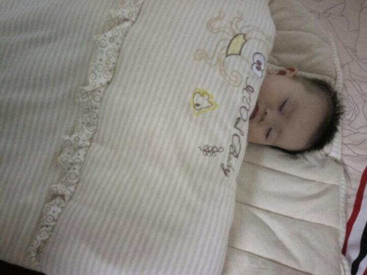 尹珂儿(ICEOL)初生婴儿睡袋春秋季新生儿抱被婴幼儿童睡袋防踢被小孩纯棉宝宝用品夏季空调被子 彩棉睡袋 L码(1-5岁) 晒单图