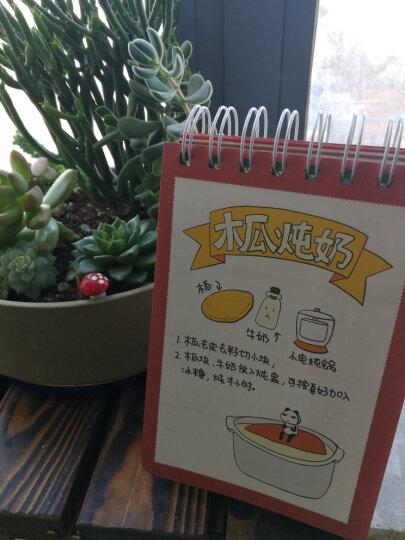 我的小煮意之2016猴年台历书:打打杀杀不是好人生,吃才是正经事!(精装全彩) 晒单图