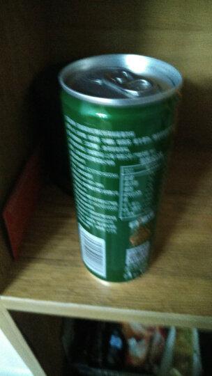 日加满 劲松 能量饮料(松针绿茶风味)250ml*24罐/箱 含牛磺酸 晒单图