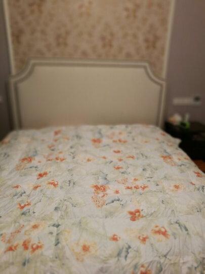 【无货】富安娜家纺 被子冬天羽绒被95%白鹅绒印花磨毛面料保暖厚被子  暖风拂晓 绿色 1.8m(230*229cm) 晒单图