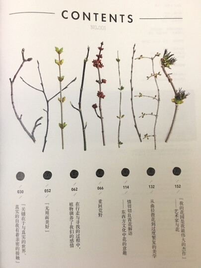 目客001:花朵与我 Lens杂志转型之作 文学随笔 人文艺术和生活美学 影 中信出版社 晒单图