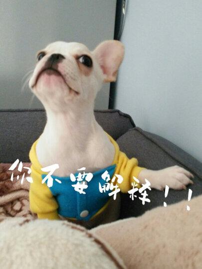 Griffin贵芬火鸡三文鱼无谷成犬天然粮【A14】15磅 晒单图