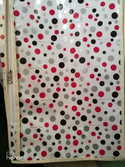 百草园 圆点系列可视衣服收纳袋整理袋 衣物防尘罩(5个装) 晒单图