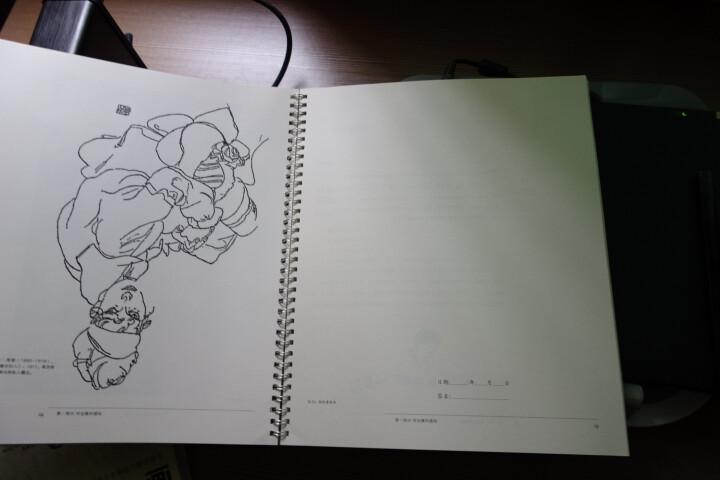 五天学会绘画(套装) 晒单图