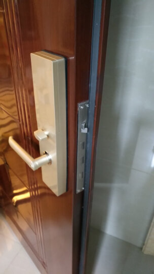 德施曼指纹锁家用防盗门锁滑盖智能密码锁电子门锁T720S 星夜银+智能摄像头+蓝牙钥匙 晒单图