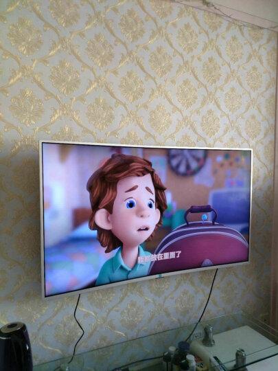 乐视(Letv)超级电视 X65 65英寸4K超高清人工智能超薄平板网络电视(标配挂架) 晒单图