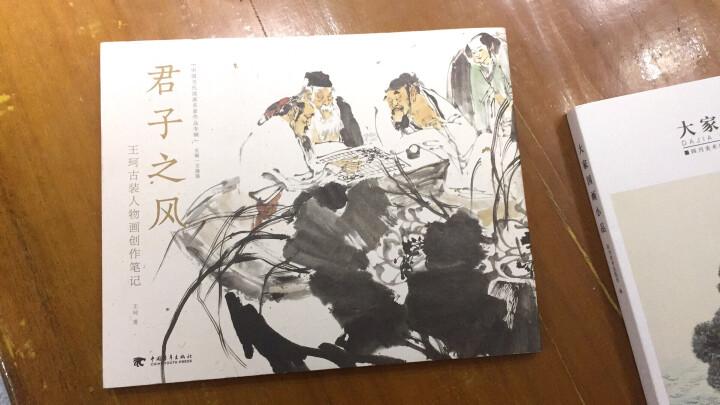君子之风:王珂古装人物画创作笔记 晒单图