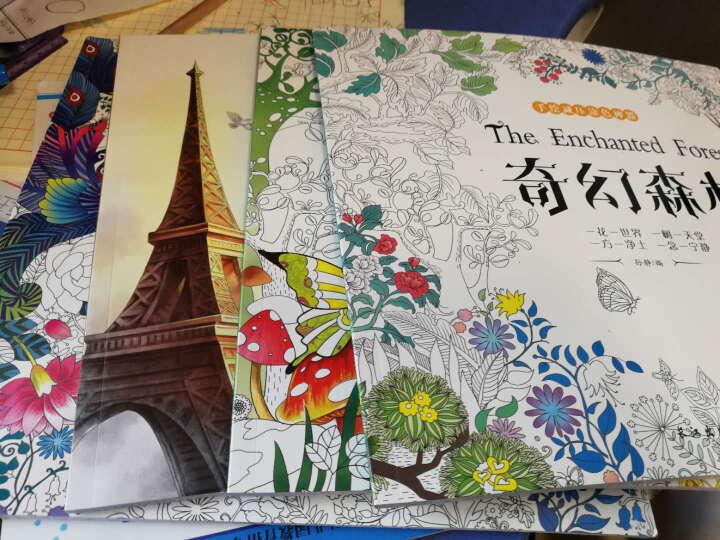 包邮 我的神秘花园+童话梦境+奇幻森林+时间旅程全4册手绘填色书秘密花园成人减压儿童涂色书 晒单图