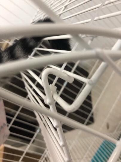 【空间升级 买一送三】憨憨宠 猫笼 加粗加密折叠双层三层四层猫笼子猫别墅大号宠物笼子猫咪用品 粉色 升级款特大四层三门 92*60*134cm 晒单图