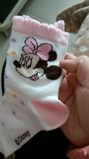 迪士尼儿童袜子男孩女孩春秋季短棉袜幼儿宝宝袜 00099男童6双 20-22cm/适合8-10岁 晒单图