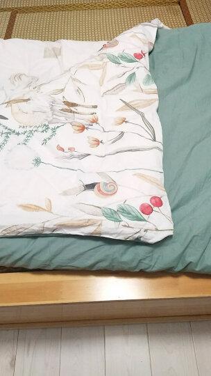 华洛芙 小清新四件套全棉宿舍四件套小清新田园套件床单被套 粉红色  自然拥抱  信封款 2.0m(6.6英尺)床 晒单图