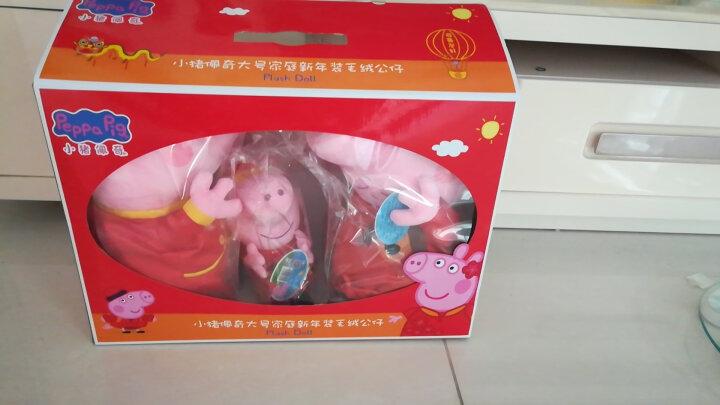 小猪佩奇Peppa Pig粉红猪小妹佩佩猪 毛绒玩具 抱枕公仔布娃娃玩偶系列 新年款大号一家彩盒 晒单图