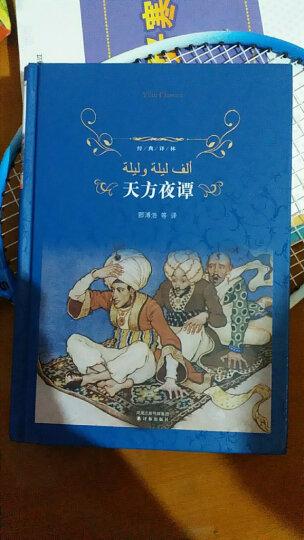 童年·在人间·我的大学/经典译林 晒单图