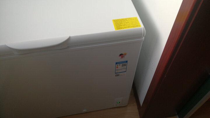 海尔(Haier)BC/BD-202HT 202升家用冰柜 冷藏冷冻转换柜  冷柜 节能单温冰箱 晒单图